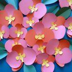 orquídees i ulleres de sol, aparadorisme, Andrea Alcalá, òptica de centre, cardedeu